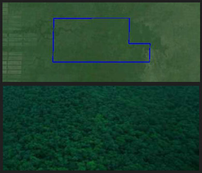 sat + surface Paraguay Chaco farm 187a