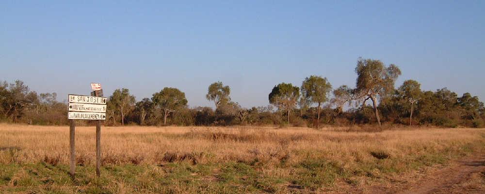 Paraguay Chaco foresclearing, Palmar de las Islas